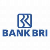Lowongan Bank BRI Banjarmasin