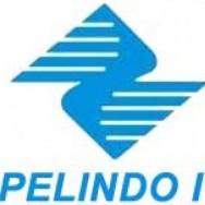 Pelindo I