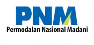 PT PNM