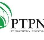 PTPN X