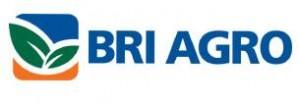 Lowongan Bank BRI Agro