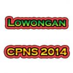 CPNS Kementerian 2014