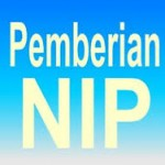 NIP PNS