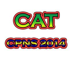 Tes CAT CPNS 2014