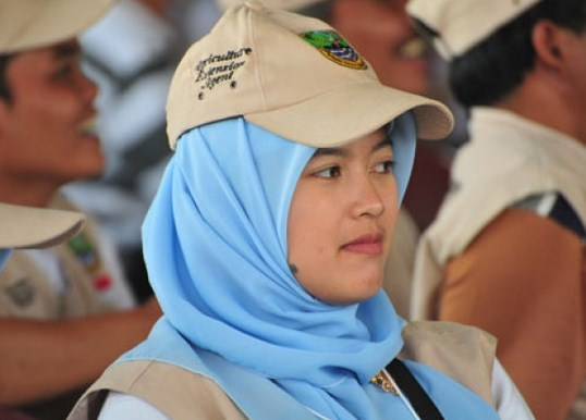Image Result For Info Cpns Ngawi
