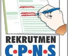 Lowongan CPNS 2017 Hanya Untuk Formasi Khusus