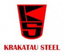 Hasil Seleksi Rekrutmen PT. Krakatau Steel Tahun 2017