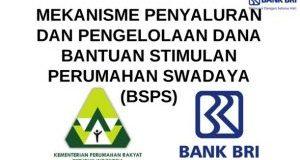 Lowongan Tenaga Pendamping (KORFAS dan TFL) Kegiatan BSPS Provinsi Jawa Tengah